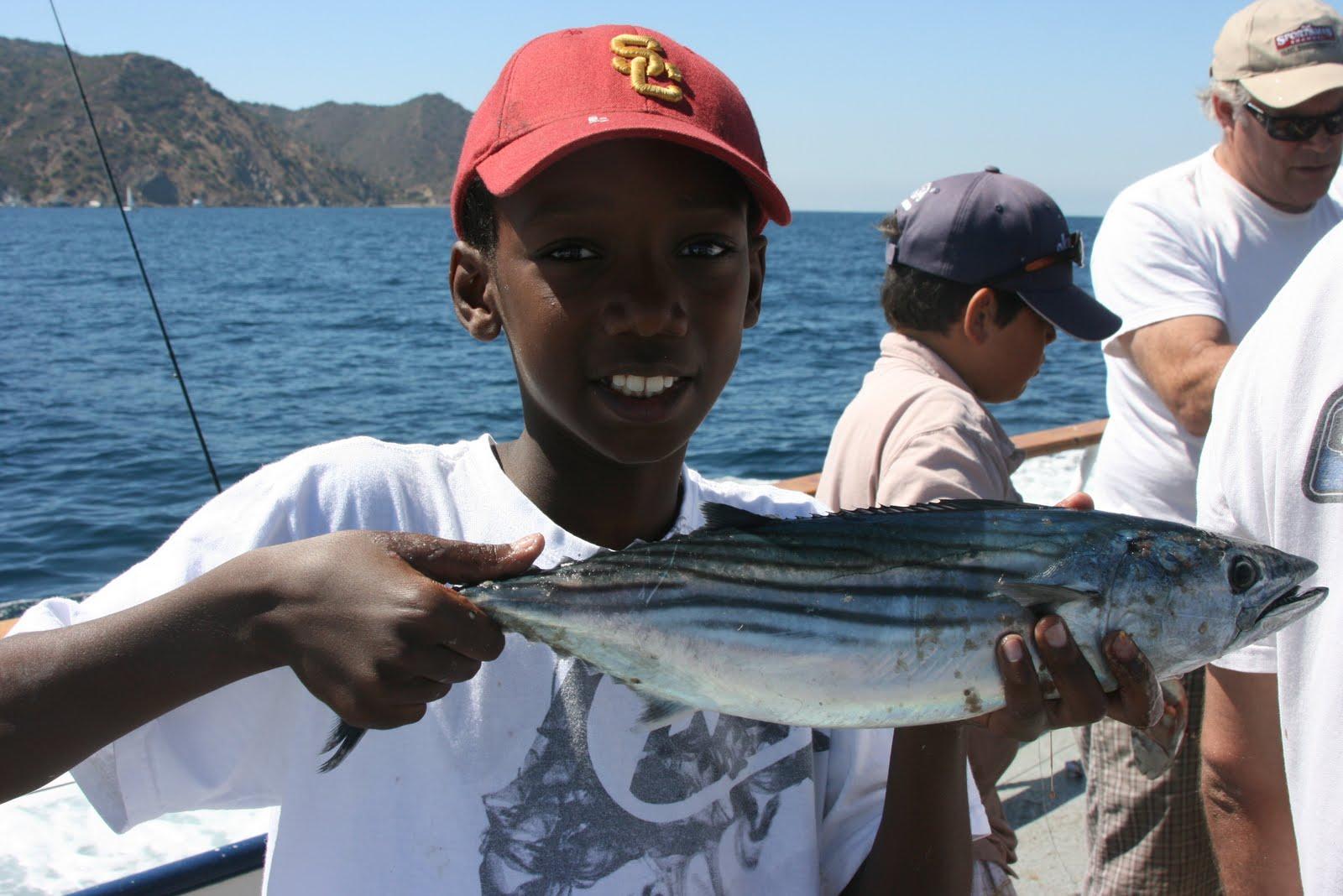 Dan 39 S Journal Freelance Fish Report