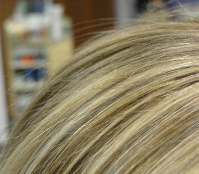 Blonde Hair with Blonde Highlights