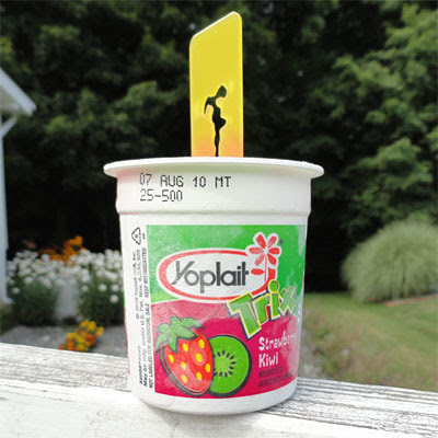Yoplait Yogurt Kids 6 Pack Frozen