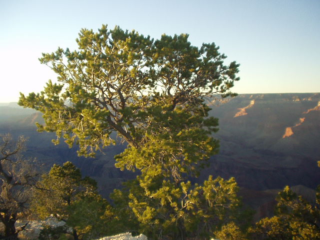 Yaki Point at sunset