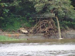 Poze poluarea apei