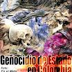 """La mayor fosa común de América: hallada en el Meta, Colombia,  en diciembre 2009, hallados al menos 2000 cadáveres; el ejército había estado enterrando allí a """"desaparecidos"""" desde el 2005."""