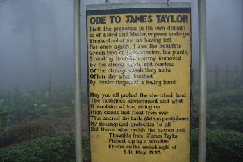 ODE to james tailor