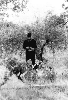 "Parintele Paisie Aghioritul - la Coliba (Chilia) ""Cinstitei Cruci"" din Sf. Munte Athos"