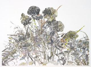 Richard Müller: Plantes poussant devant l'atelier 5