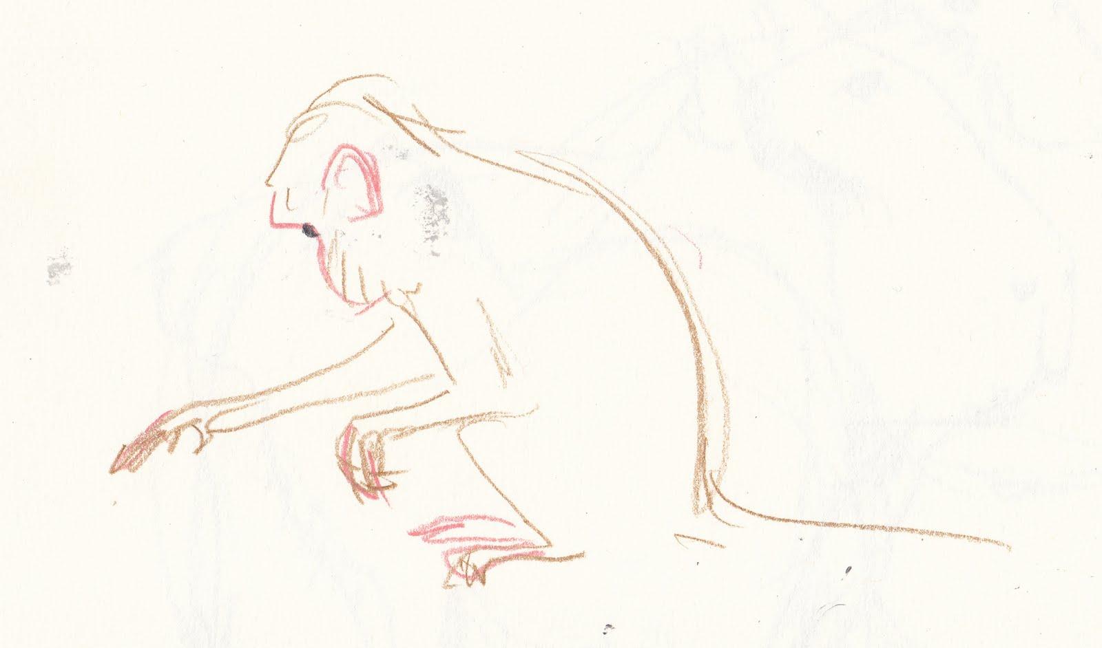 elys dolan monkey life drawing
