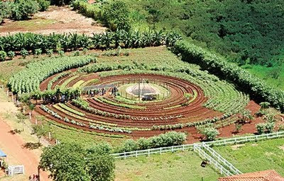 Senda verde mandala garden marked out what s the next step for Jardin mandala