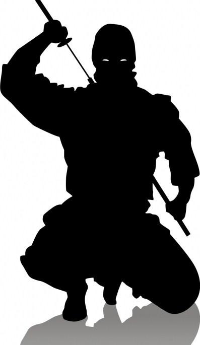 http://1.bp.blogspot.com/_HyX9GkgQuLU/SQp3K_glv6I/AAAAAAAAADk/8Hl4oZsKoJM/S700/ninja.jpg