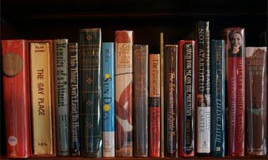 noam chomsky books collection pdf