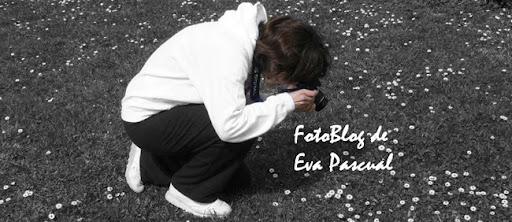 FotoBlog de Eva Pascual