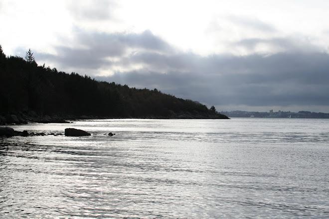 utsikt til Sandnes fra Dale