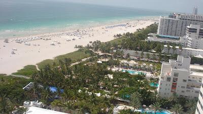 the shore club hotel in miami