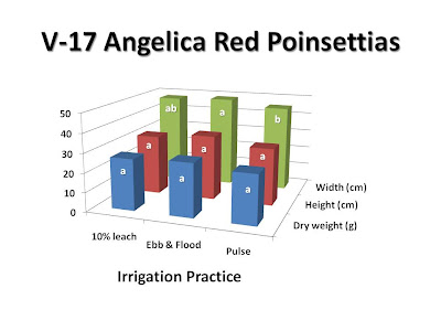 Fig. 3. Irrigation with 10% leach, ebb and flood, and pulse effect plant growth of 'V-17 Angelica Red' poinsettias