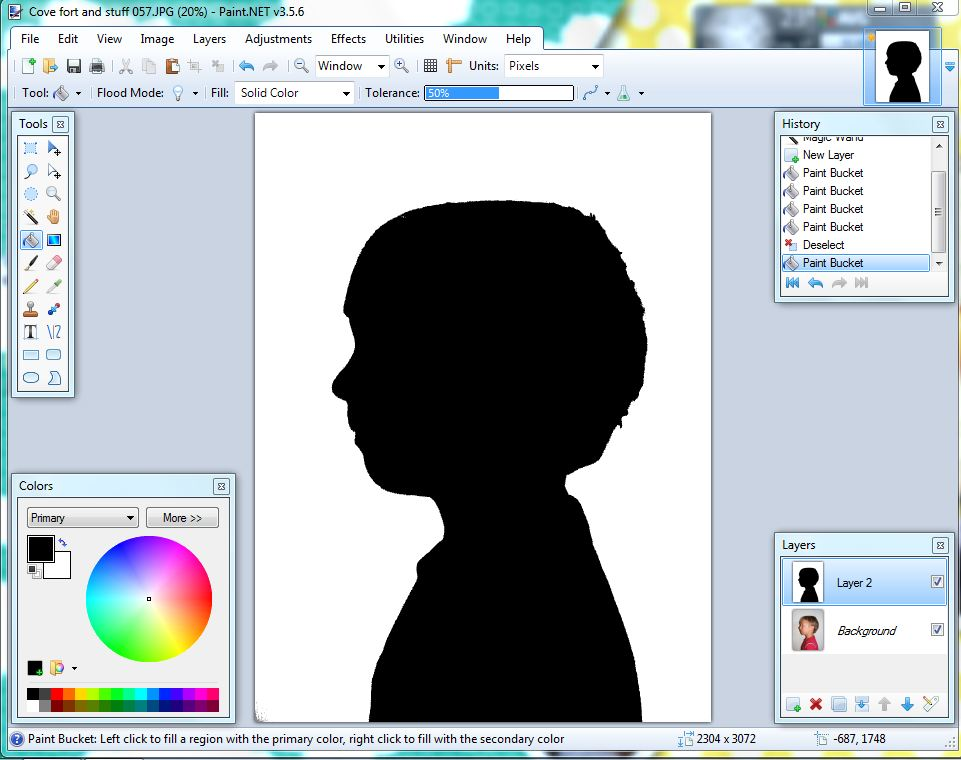 Simple 4 step photo editing silhouette tutorial everyday for Create a program online