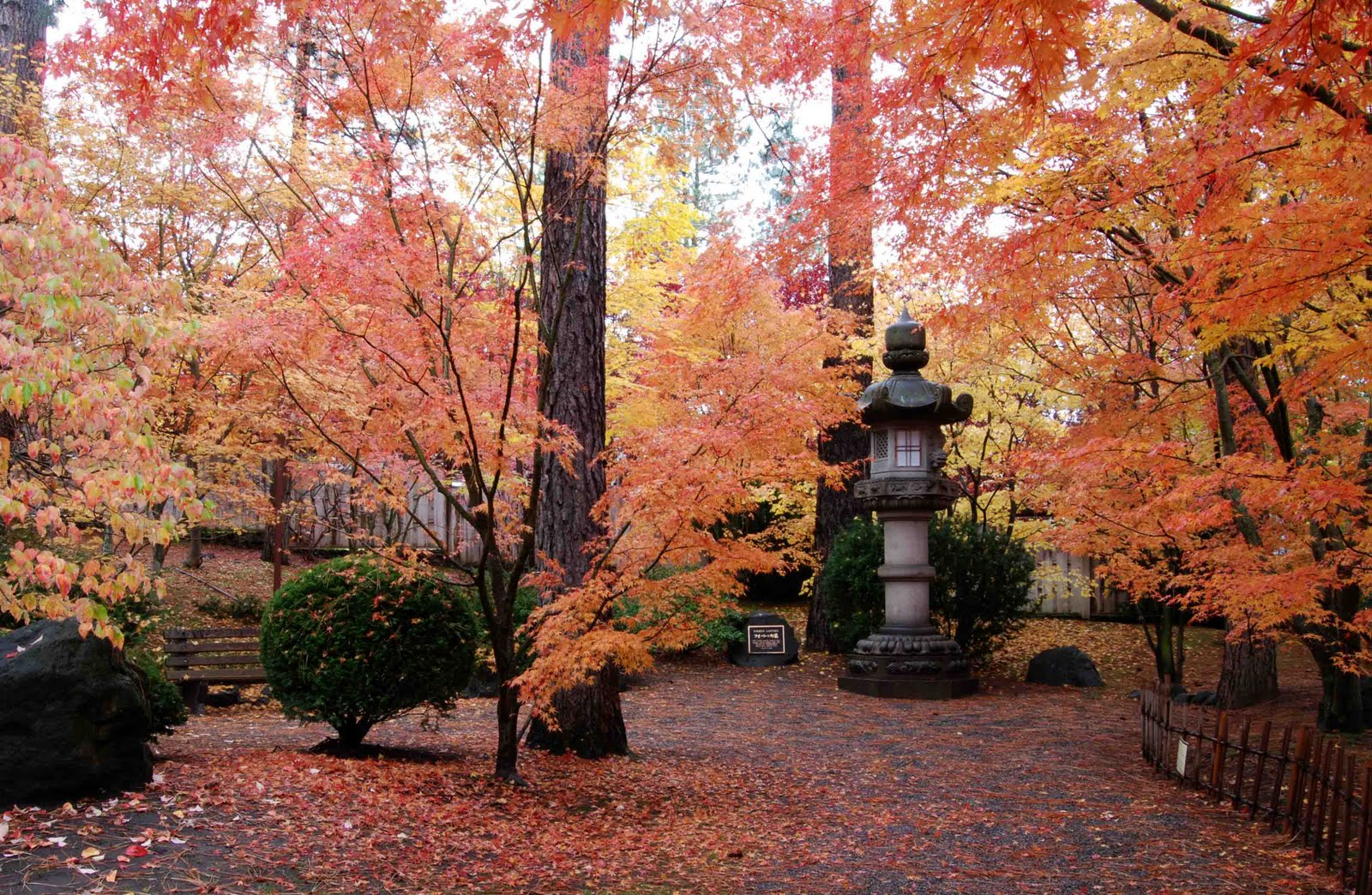Brian Backus Blog October 31 2020 Nishinomiya Tsutakawa Japanese Garden Manito Park Spokane