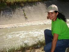 Desechos compilados en la superficie de El Guaire