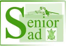 Logo SeniorSad