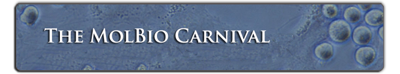 The MolBio Carnival