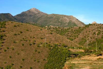Pico - Malaguena