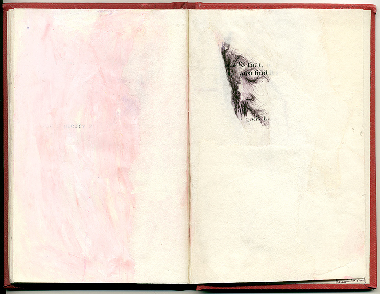 mercy, And Other Observations, 2007. pen, acrylic & collage on altered book.