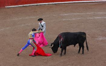 The real Matador