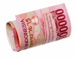 Download Nota Keuangan 2011 PDF