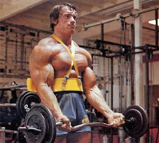 Biceps o anterior também