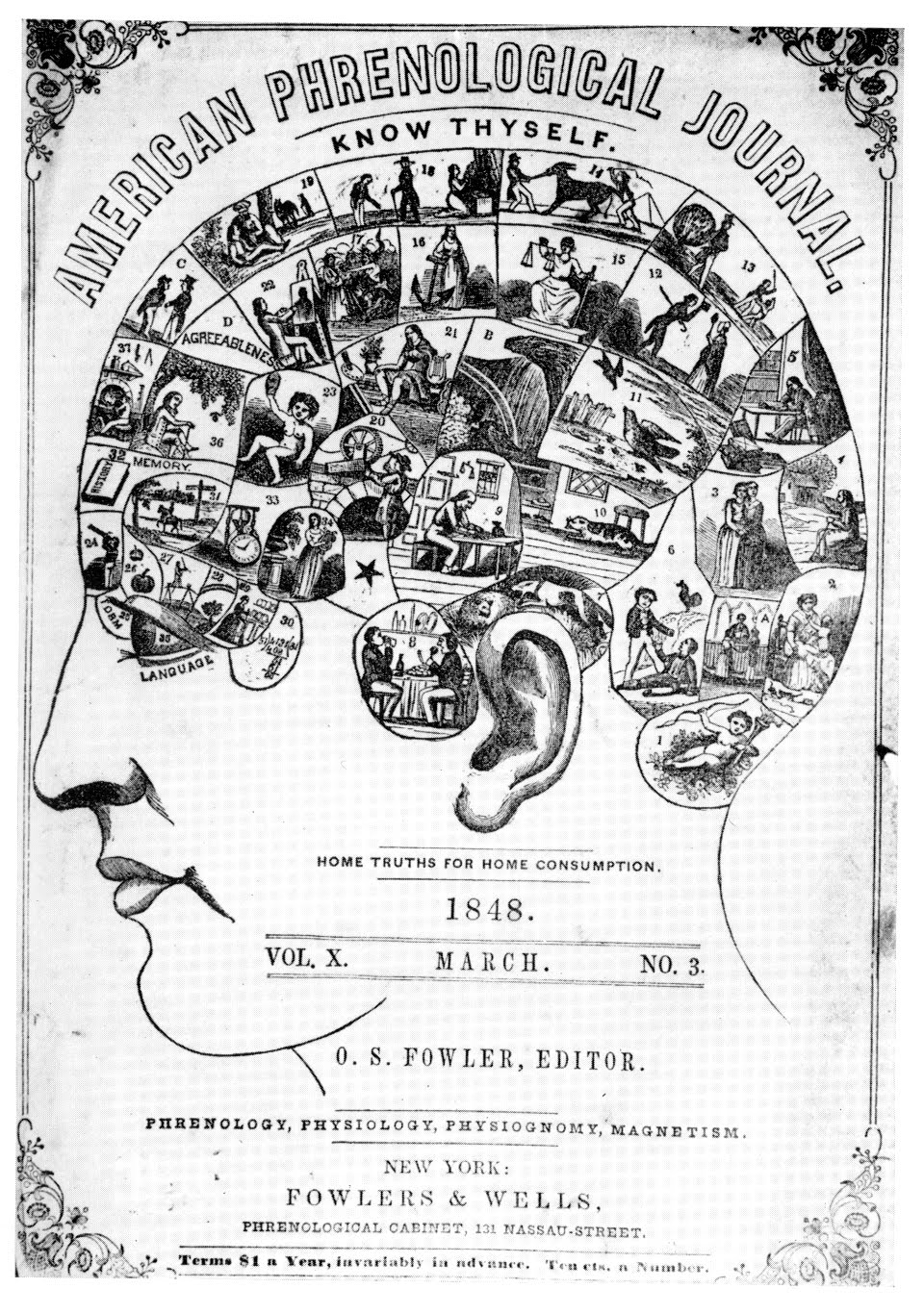 development of the science of psychology during the 19th century The development of the science of psychology during the 19th century psychology is psychology a science  in order to determine if psychology is a science or not it is important to understand what being a science means.