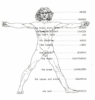 Zodiac Signs And Body Parts on centaur names