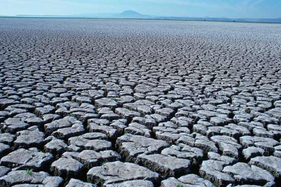 essay on droughts and famines in the world