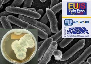 Las bacterias resistentes salen de los hospitales