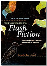 Field Guide to Flash Fiction, Rose Metal Press, USA