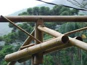 * Técnicas construtivas com Bambu