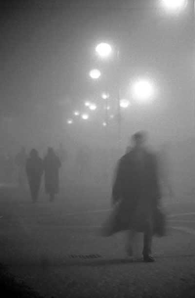 La Stanza della Musica - Pagina 3 Bu-nebbia