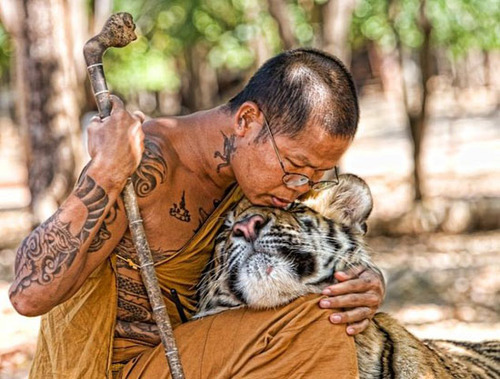 ... And All Sentient Beings At All Moments For Ever And Ever Because He Had  Come To The Moment Through The Divine Grace When He Was EMBODYING  Compassion.