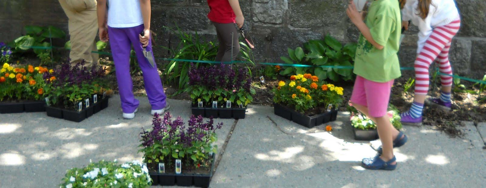 Volunteers for isham park sidewalk margin garden along for 100 park terrace west