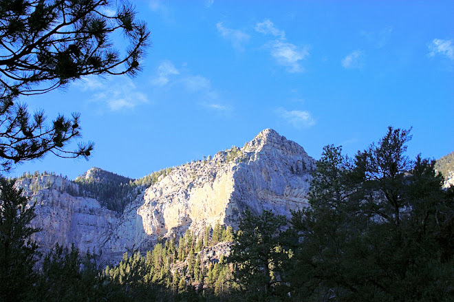 Mount Charleston, Las Vegas, NV