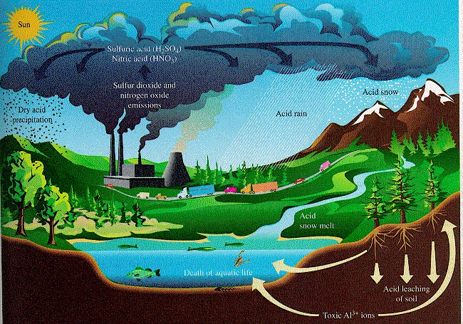 a problem of acid rain in our world Acid rain is considered by many people to be one of the most serious environmental problems of our time it is a global problem that is gradually affecting our world it is a global problem that is gradually affecting our world.