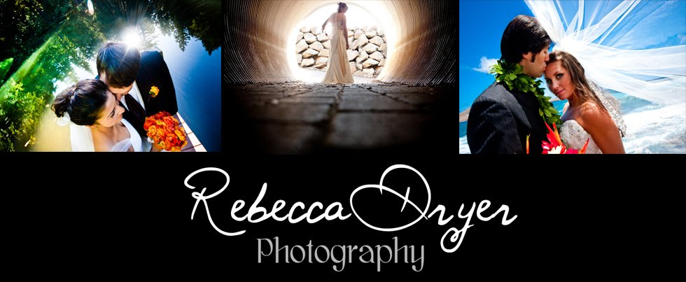 Rebecca Dryer Photography Blog