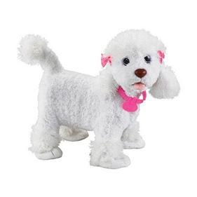 Dice Dog Toy