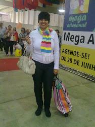 Mega Artesanal 2010