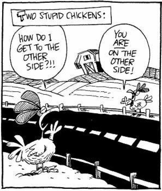 Funny chicken jokes - photo#28