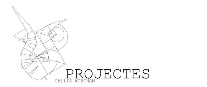 Joan Callis Pia Wortham Arquitecte