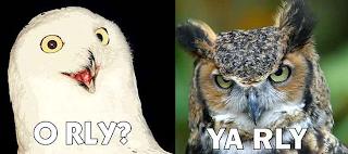 O Rly? Ya Rly owls