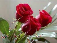 Guardo tus Rosas