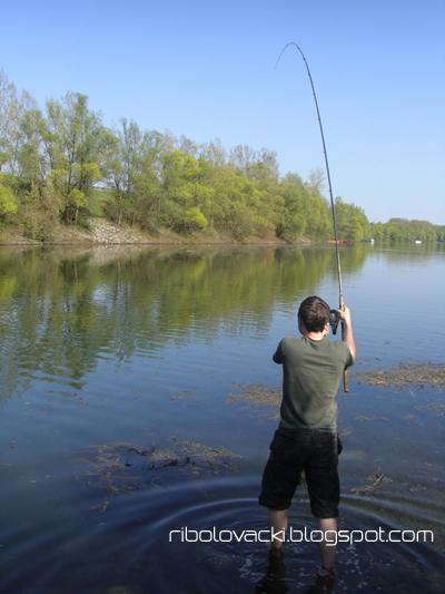 Lov Mrene Kotrljanjem Mrena-ribolov