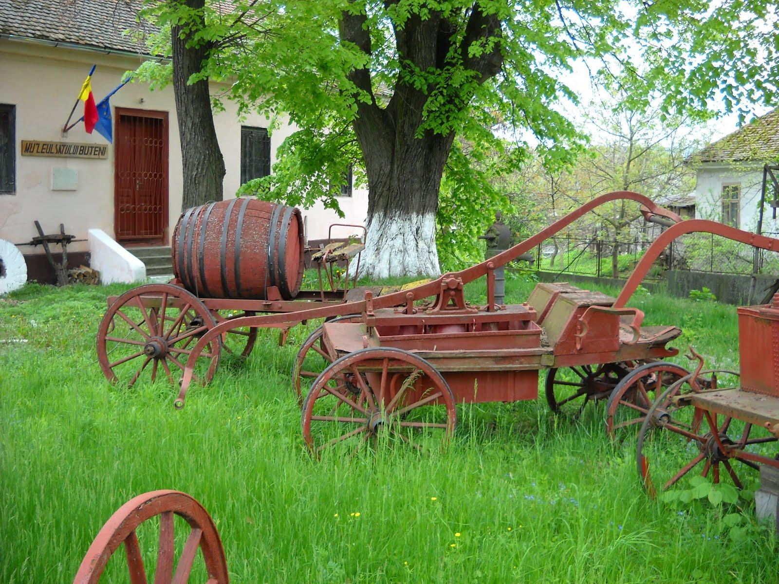 http://1.bp.blogspot.com/_ILnlQVHu15Q/S9beLRjHhhI/AAAAAAAABPA/7DkY4Nf6Idw/s1600/la+muzeul+satului+din+Buteni.jpg