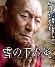 DVD「雪の下の炎」発売中!