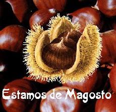 RECURSOS MAGOSTO.