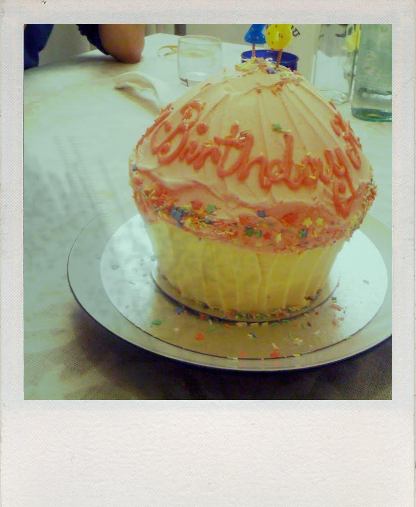 Hummingbird Bakery Birthday Cake Cookies